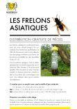 Flyer frelons asiatiques